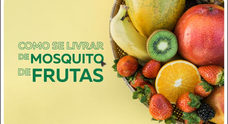 cesta de frutas com titulo de como se livrar de mosquito de frutas ao lado